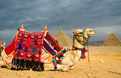 Вступили в силу правила въезда туристов из РФ в Египет!